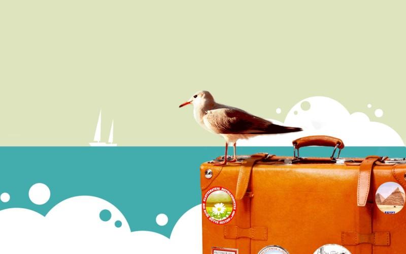 happy-travel-bird-wallpaper